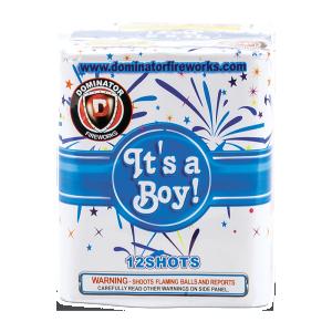 Keystone Fireworks Gender Reveal Cake