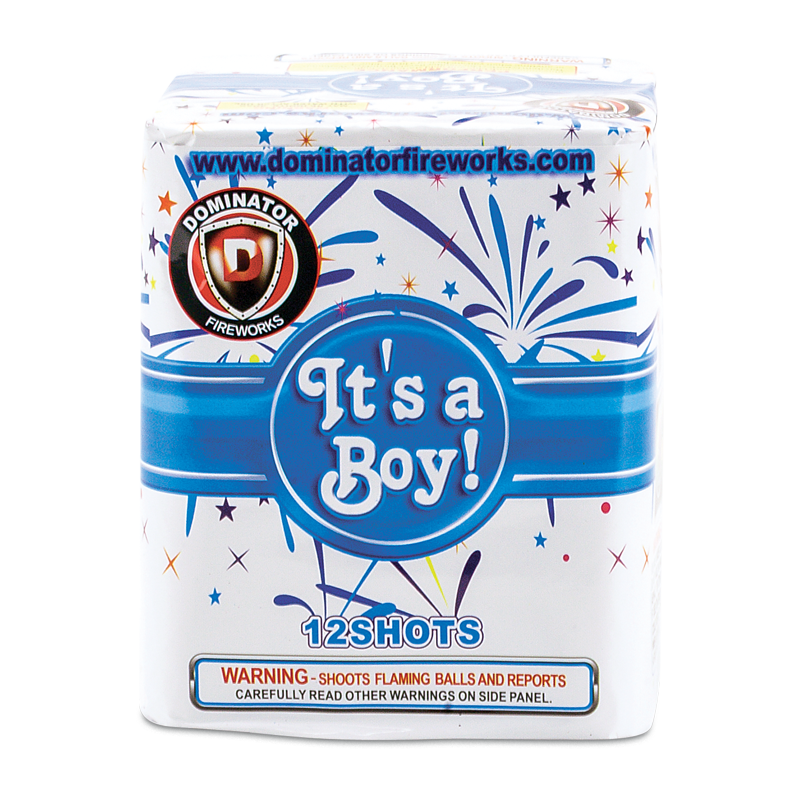 Keystone Fireworks Gender Reveal Cake