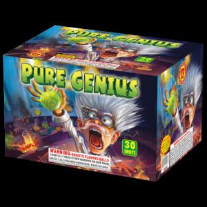 Pure Genius, Keystone Fireworks, Pennsylvania, 500 Gram Cake